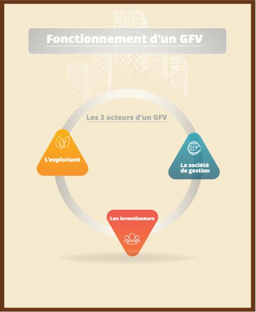 la defiscalisation avec un schema GFV